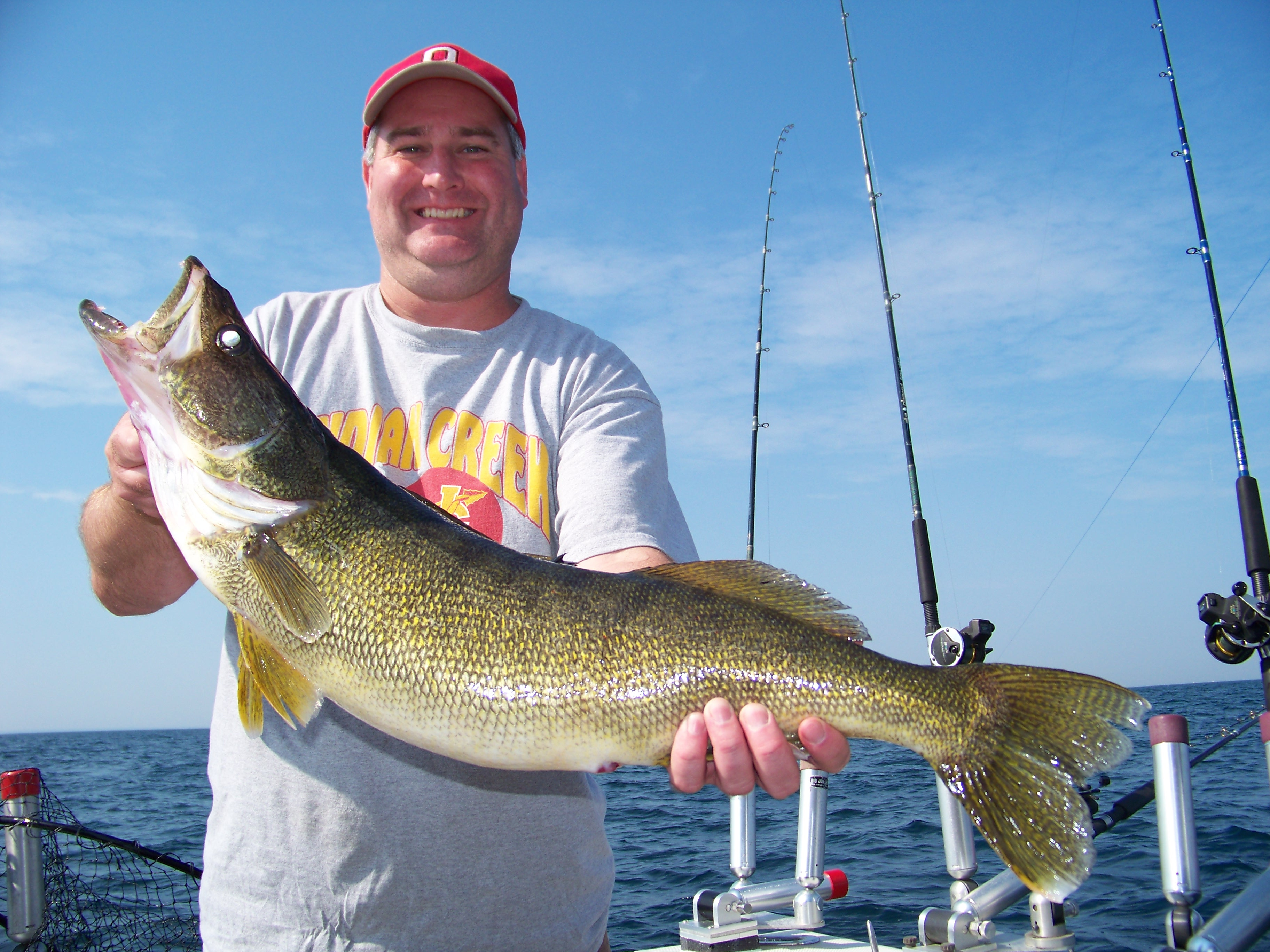 Perch fishing lake erie all the best fish in 2018 for Lake erie perch fishing report central basin
